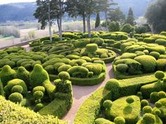 The beautiful topiary gardens of the Château de Marqueyssac in Dordogne, France.