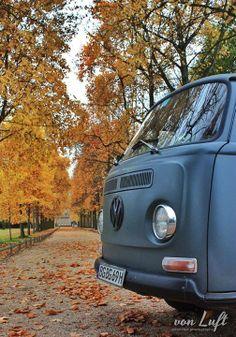 T2 vW Camper van Autumn Fall leaves
