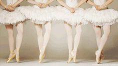 gif love pretty girls girl beautiful white dancing Legs ballerina ballet dance sports Dancer together girly passion Sport Ballet GIF en pointe sporty tutu liebe ballett wundershön
