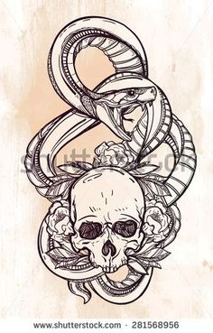 Hand-drawn vintage linear tattoo. Stylish symbol, highly detailed hand drawn snake serpent, wrapped around ornate floral human scull linear style. Engraved pirate dark romantic isolated vector art.: