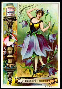 1895. Bluebell Flower Spirit trading card issued by Liebig Extract of Beef Company. S445.