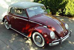 NEW! White Wall Tyre Insert Trim Set VW BUG PRE BEETLE KARMANN Ghia.......