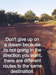 Don't give up on a dream because it's not going in the direction you want, there are different routes to the same destination.