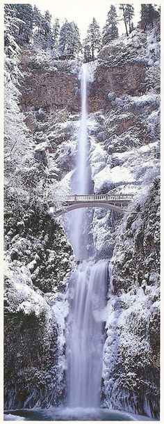 This is one of my favorite places in the Pacific Northwest. Columbia River Gorge, Oregon - Multnomah Falls, Winter
