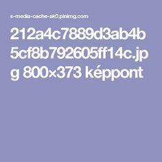 212a4c7889d3ab4b5cf8b792605ff14c.jpg 800×373 képpont