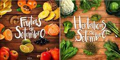 Frutas e Hortaliças de Setembro: menos agrotóxico e mais vida e saúde na sua mesa! https://jardimdogirassol.wordpress.com/2015/09/11/frutas-e-hortalicas-de-setembro-menos-agrotoxico-e-mais-vida-e-saude-na-sua-mesa/