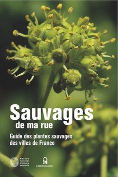 Sauvages de ma rue, le guide des plantes sauvages des villes de France  http://www.pariscotejardin.fr/2012/05/sauvages-de-ma-rue-le-guide-des-plantes-sauvages-des-villes-de-france/