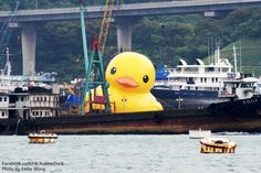 Rubber Duck by Florentijn Hofman in Hong Kong