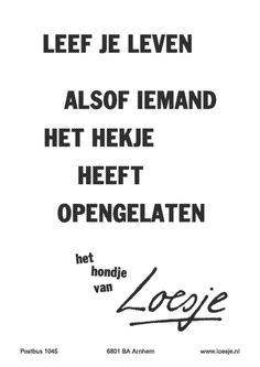 loesje spreuken weekend 61 beste afbeeldingen van Loesje wijsheden!   Dutch quotes  loesje spreuken weekend