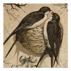 Vintage Black White Cute Love Birds Painting Posters