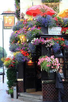 the lovely and blooming Churchill Arms pub! 119 Kensington Church Street, London. #churchillarmskensington.co.uk