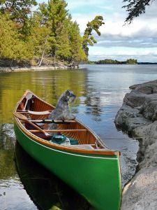 Murphys Point Provincial Park Places Ive Been, Places To Visit, Ontario Parks, Algonquin Park, Camping, Mopar, Nature, Trips, Bucket