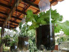 Temos muitas coisas que podemos criar com as garrafas pet.   Trago para vcs boas ideias de como usar com as plantas, fazendo vasos, hortas ...