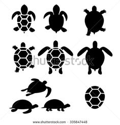 turtle family. a trail of swimming turtles. kind of like
