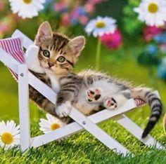 Hava Durumu Nasıl Olursa Olsun, Sizin Havanız Hep Güzel Olsun.... ___// GÜNAYDIN, MUTLU GÜNLER  ^.~ www.sosyetikcadde.com ♡