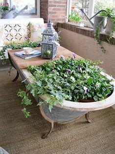 Banheira vintage se transforma em mini jardim.