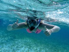 Swim with friendly sea creatures and explore the ocean floor at Sydney's best snorkelling spots.