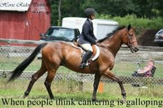 No. not at all. it's just not right... or when people call galloping running.  A girl at my school told me that a canter was a slow jog, Honey, No.