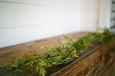 Fern Garland | The Magnolia Market