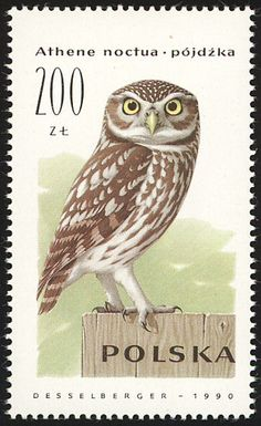 Little Owl stamps - mainly images - gallery format