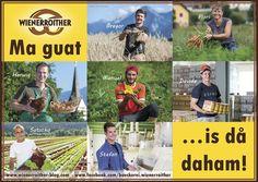 #Wienerroither. ❤️ Ma guat!  (mw5) #ausderregion #regional #partner #danke #gemeinsam #maguat #bäckerei #kärnten #region #bauern #carinthia #wörthersee