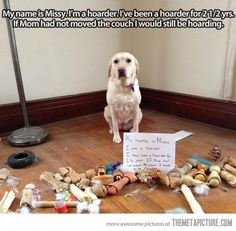 Confession of a hoarder… (Dog's mom only moves the sofa every 2-1/2 years? Don't you want to clean under it? Shame on mom, not the dog!!!)