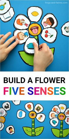 Teaching kids about five senses can be a lot of fun! Kids will pick up a flower petal and look at the picture. They can place the flower petal around the flower center that represents the sense they think they use the most. #5senses #printableactivity #printablesforkids