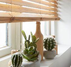 Window Dressings, Shutters, Blinds, Sweet Home, Windows, Living Room, Bathroom, House Styles, Inspiration