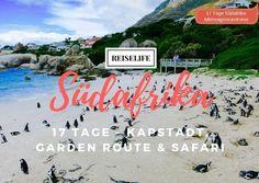 Dein Rundreise Guide für Südafrika. 17 Tage Guide mit vielen Unterkünften und Erlebnisausflügen!