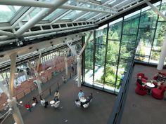 「日産先進技術開発センター(NATC)」(07年)の、北向きに開口をとった「ステップワークプレイス」を見下ろす(写真:日本設計)