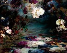 Finalist, LensCulture Earth Awards:    A jumble of flowers seems to float in a sea of liquid color, their images echoed on reflective surfaces —vibrant, blooming metaphors for the overflowing human spirit