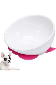 (This is an affiliate pin) SIZE & COLOR INFORMATION -- Ceramic bowl tilt design makes eating more convenient -- The bracket raises the height of the bowl to make the dog more comfortable to eat. -- In fact, this bulldog bowl is designed for flat-faced pets, so cats are also suitable. -- Especially Garfield, at least to avoid the face is clean after eating. -- Eat anti-slip protection for the bowl and the stand separately, so that the dog can eat more peace of mind Worried that dogs eat too ... Cat Feeder, Dog Eating, Ceramic Bowls, In The Heights, No Worries, Pets, Tilt, Face, Color