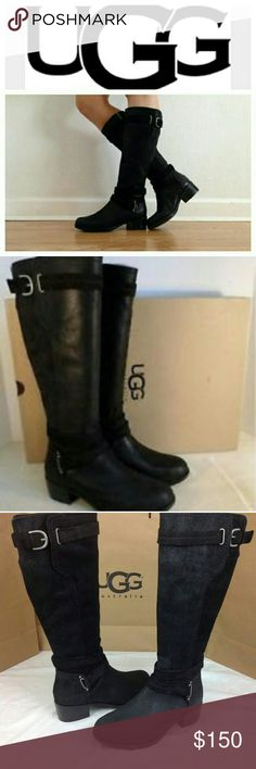New Ugg Darcie Riding Boots New with Tags! Ugg Darcie Riding Boots. Real Leather. Lamb fur. Sold out many places! UGG Shoes