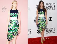 Sandra Bullock in Peter Pilotto (Resort 2014)