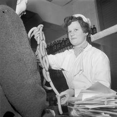 Vuonna 1958 helsinkiläinen normaaliperhe söi 100 kiloa makkaratuotteita vuodessa. Kuvassa neiti Leena Kumpulainen myy ja neiti Seija Salmi ostaa nakkeja. Helsinki 27.1.1958. photo: Martti Brandt.  SUOMEN VALOKUVATAITEEN MUSEO