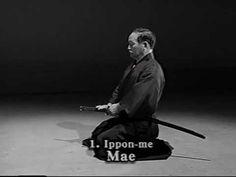 Iaido Kata Seitei 01 Ippon-me - Mae - High quality - www.thesamuraiworks...