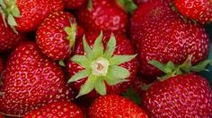 18 Recipes to Celebrate Strawberry Season - NYT Cooking