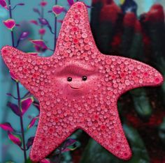 A starfish belonging to Phylum Echinodermata from one of my favorite movies Finding Nemo