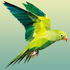 Parrot Drawing, Watercolor Paintings For Beginners, Polygon Art, Pattern Photography, Arte Pop, Art Studies, Geometric Art, Animal Paintings, Bird Art