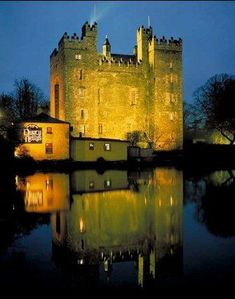 Step back in time this winter and relive what it was like to live in medieval Ireland in Bunratty Castle County Clare. Clare Ireland, Ireland Uk, Ireland Travel, Limerick Ireland, Beautiful Castles, Beautiful Places, Places To Travel, Places To See, Castles In Ireland