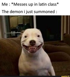 : *Messes up in latin class* The demon ijust summoned : – popular memes on the site Me : *Messes up in latin class* The demon ijust summoned : – popular memes on the site Really Funny Memes, Stupid Funny Memes, Funny Relatable Memes, Haha Funny, Funny Cute, Funny Texts, Funny Stuff, Messed Up Memes, Funny Things