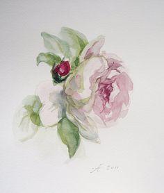 Tender Pink Rose Painting Flower Fine Art by VerbruggeWatercolor, $19.00