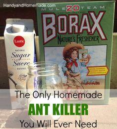 DIY Homemade Natural Ant Killer Recipe, Indoors or Outdoors Ant Killer Recipe, Homemade Ant Killer, Diy Cleaners, Cleaners Homemade, Cleaning Solutions, Cleaning Hacks, Handy Gadgets, Limpieza Natural, Get Rid Of Ants