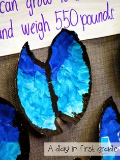 morpho butterflies-- awesome afternoon craft {great while teaching about the rain forest} Rainforest Preschool, Rainforest Classroom, Rainforest Crafts, Preschool Jungle, Rainforest Theme, Rainforest Animals, Preschool Crafts, Rainforest Butterfly, Amazon Rainforest