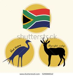 Set of South Africa National Symbols Africa Symbol, Visit South Africa, Stock Portfolio, National Symbols, Tweety, Stock Photos, Illustration, Fictional Characters, Image