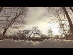 Кузьминский Парк DJI Osmo - Test - YouTube