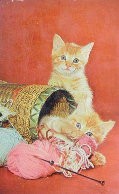 Vintage Postcard Kittens Cats Basket of Yarn by ImagesGoneByAgain Knitting Needles, Knitting Yarn, Cat Basket, Vintage Cat, Cats And Kittens, Cute Cats, Kitty, Painting, Animals