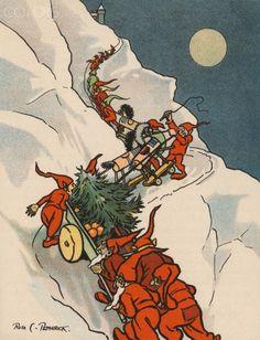 Rosa C. Petherick illustration