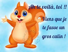 Ah te voilà, toi !! Viens que je te fasse un gros câlin ! #calins ecureuil calin
