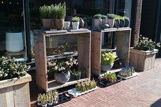 Bloemist Groenlust bloem plant & Interieur, bloemen Ossendrecht